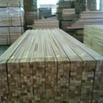 Seraya FJKDS4S Sticks